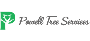 Powell Tree Services | Toronto Tree Service | Tree Removal | Arborist Reports | Stump Removal | Tree Pruning